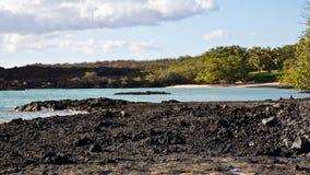 Όαση νότιου Maui Στοκ φωτογραφίες με δικαίωμα ελεύθερης χρήσης