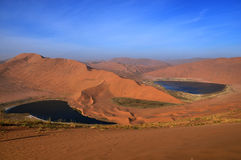 Όαση στην έρημο Στοκ Φωτογραφίες
