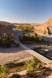 Όαση των φοινίκων, Oued Tissint, Μαρόκο Στοκ εικόνες με δικαίωμα ελεύθερης χρήσης
