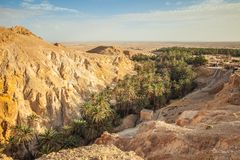 Όαση Chebika βουνών στα σύνορα Σαχάρας, Τυνησία, Αφρική στοκ εικόνα με δικαίωμα ελεύθερης χρήσης