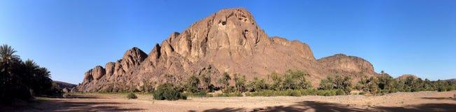 Όαση Fint (όαση de/du Fint) κοντά σε Ouarzazate, Morroco Στοκ Εικόνες