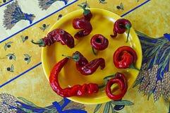 Όγδοο κόκκινο - καυτά πιπέρια τσίλι Στοκ Εικόνες