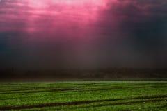 Όλα πνίγουν στο πυκνό ρεύμα της σκόνης Στοκ εικόνα με δικαίωμα ελεύθερης χρήσης