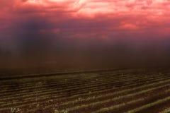 Όλα πνίγουν στο πυκνό ρεύμα της σκόνης Στοκ Φωτογραφίες