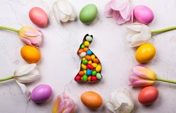 2 όλα τα αυγά Πάσχας έννοιας νεοσσών κάδων ανθίζουν τη χλόη χρωμάτισαν τις τοποθετημένες νεολαίες Τοπ όψη Στοκ εικόνες με δικαίωμα ελεύθερης χρήσης