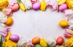 2 όλα τα αυγά Πάσχας έννοιας νεοσσών κάδων ανθίζουν τη χλόη χρωμάτισαν τις τοποθετημένες νεολαίες Τοπ όψη Στοκ εικόνα με δικαίωμα ελεύθερης χρήσης