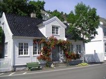 όλα τα λουλούδια Στοκ φωτογραφία με δικαίωμα ελεύθερης χρήσης