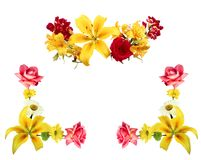 όλες οι οποιεσδήποτε σύνθεσης στοιχείων floral συστάσεις μεγέθους κλίμακας αντικειμένων απεικόνισης μεμονωμένες στο διάνυσμα πλαί Στοκ φωτογραφία με δικαίωμα ελεύθερης χρήσης