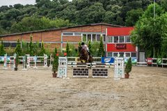 Όμορφα άλογο και jokey στη δράση στη διαδρομή αγώνων αλόγων με τον εξοπλισμό εμποδίων στον ιππόδρομο στοκ φωτογραφία με δικαίωμα ελεύθερης χρήσης