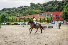 Όμορφα άλογο και jokey στη δράση στη διαδρομή αγώνων αλόγων με τον εξοπλισμό εμποδίων στον ιππόδρομο στοκ εικόνα