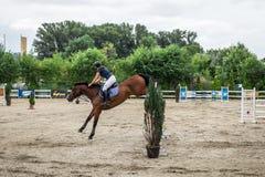 Όμορφα άλογο και jokey στη δράση στη διαδρομή αγώνων αλόγων με τον εξοπλισμό εμποδίων στον ιππόδρομο στοκ φωτογραφία