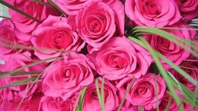 Όμορφα άνθη των κόκκινων τριαντάφυλλων Ανθοδέσμη της κινηματογράφησης σε πρώτο πλάνο λουλουδιών Στοκ φωτογραφίες με δικαίωμα ελεύθερης χρήσης