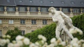 Όμορφα άσπρα λουλούδια, αρχαία άγαλμα και λουξεμβούργιο παλάτι στο Παρίσι, Γαλλία απόθεμα βίντεο