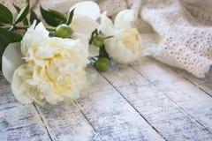 Όμορφα άσπρα peonies σε έναν άσπρο ξύλινο πίνακα στοκ φωτογραφία