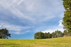 Όμορφα δέντρα λιβαδιών τοπίων άνοιξη πράσινα και υπόβαθρο μπλε ουρανού Στοκ εικόνα με δικαίωμα ελεύθερης χρήσης