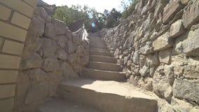Όμορφα βήματα από μια άγρια πέτρα απόθεμα βίντεο