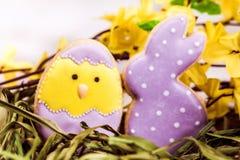 Όμορφα βερνικωμένα κουνέλι και αυγό Πάσχας Στοκ Φωτογραφία