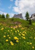 Όμορφα βουνά στους δολομίτες στοκ φωτογραφίες με δικαίωμα ελεύθερης χρήσης