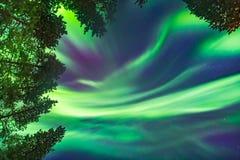 Όμορφα βόρεια φω'τα υπερυψωμένα στοκ εικόνες