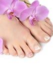 όμορφα γαλλικής πόδια SPA pedicure τέ Στοκ Φωτογραφία