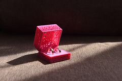 Όμορφα γαμήλια δαχτυλίδια σε ένα κιβώτιο για τις διακοσμήσεις Στοκ Φωτογραφίες