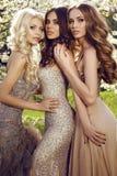 Όμορφα γοητευτικά κορίτσια στα πολυτελή φορέματα τσεκιών Στοκ Φωτογραφίες