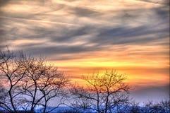 όμορφα δέντρα ηλιοβασιλέματος σκιαγραφιών fulda Στοκ εικόνες με δικαίωμα ελεύθερης χρήσης