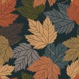 Όμορφα εκλεκτής ποιότητας φύλλα δέντρων άνευ ραφής Στοκ Εικόνες