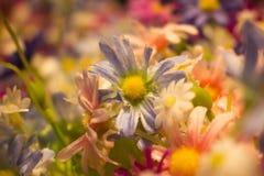 Όμορφα ζωηρόχρωμα πλαστά λουλούδια για το υπόβαθρο Στοκ Φωτογραφίες