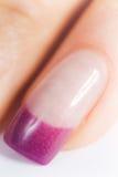 όμορφα θηλυκά νύχια Στοκ φωτογραφίες με δικαίωμα ελεύθερης χρήσης