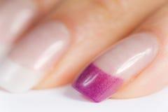 όμορφα θηλυκά νύχια Στοκ εικόνα με δικαίωμα ελεύθερης χρήσης