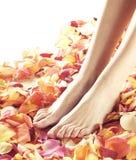 Όμορφα θηλυκά πόδια με τα πέταλα λουλουδιών Στοκ φωτογραφίες με δικαίωμα ελεύθερης χρήσης
