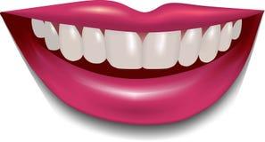 Όμορφα θηλυκά χείλια και δόντια Στοκ Φωτογραφία