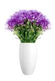Όμορφα ιώδη λουλούδια στο βάζο που απομονώνεται στο λευκό Στοκ Εικόνα