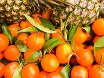 Όμορφα κίτρινα, πορτοκαλιά φυσικά γλυκά εύγευστα ώριμα μαλακά στρογγυλά φωτεινά tangerines, φρούτα, πράσινα φύλλα ανανάδων κλημεν στοκ φωτογραφία