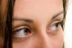 όμορφα καφετιά μάτια Στοκ φωτογραφία με δικαίωμα ελεύθερης χρήσης