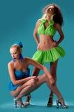 όμορφα κορίτσια δύο Στοκ εικόνα με δικαίωμα ελεύθερης χρήσης