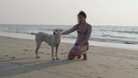 Όμορφα κορίτσι και σκυλί στην παραλία 4K φιλμ μικρού μήκους