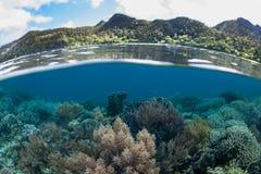 Όμορφα κοραλλιογενής ύφαλος και νησιά σε Raja Ampat στοκ φωτογραφία με δικαίωμα ελεύθερης χρήσης