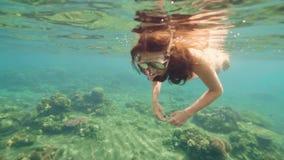 Όμορφα κοραλλιογενής ύφαλος και ψάρια που κολυμπούν στο σαφές νερό στην μπλε θάλασσα Η κολύμβηση με αναπνευστήρα γυναικών στη μάσ απόθεμα βίντεο