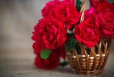 όμορφα κόκκινα τριαντάφυλ&la Στοκ φωτογραφίες με δικαίωμα ελεύθερης χρήσης