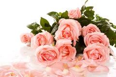 όμορφα λουλούδια ανθο&delta στοκ φωτογραφία