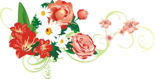 όμορφα λουλούδια ανθο&delta διανυσματική απεικόνιση
