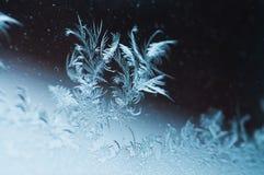 Όμορφα λουλούδια πάγου στο παράθυρο Στοκ φωτογραφία με δικαίωμα ελεύθερης χρήσης
