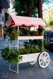 Όμορφα λουλούδια περικοπών που πωλούνται στο υπαίθριο ανθοπωλείο στη Βαρκελώνη, Ισπανία στοκ εικόνες