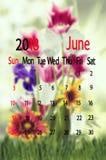 όμορφα λουλούδια στον κήπο στο ημερολογιακό υπόβαθρο, Στοκ Εικόνες