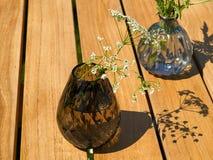 Όμορφα λουλούδια Hemlock σε ένα βάζο γυαλιού στοκ φωτογραφία
