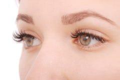 Όμορφα μάτια γυναικών με τα μακροχρόνια eyelashes όμορφες νεολαίες γυναικών στούντιο ζευγών χορεύοντας καλυμμένες Στοκ Εικόνες