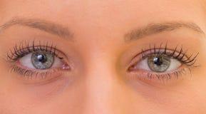 Όμορφα μάτια Στοκ Φωτογραφίες