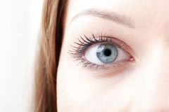 όμορφα μάτια Στοκ φωτογραφία με δικαίωμα ελεύθερης χρήσης